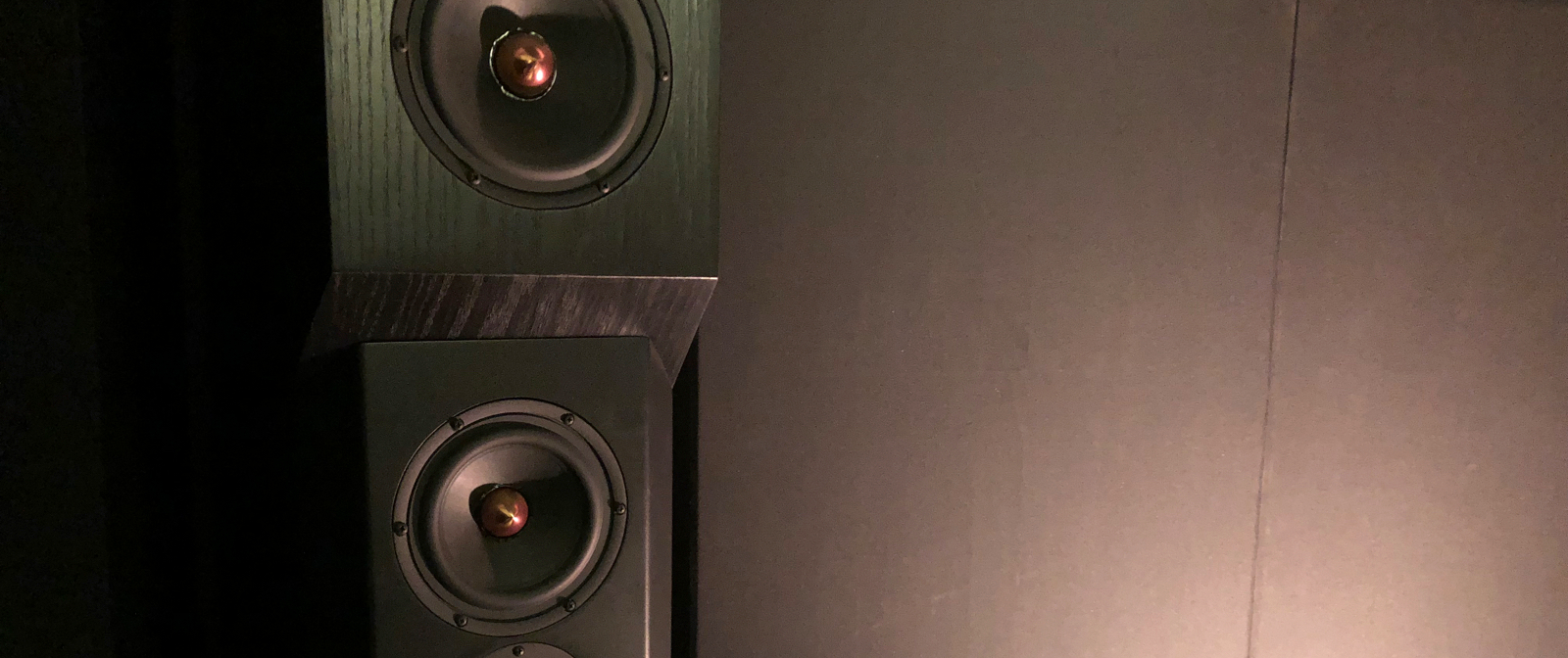 Tyler Acoustics Decade Series D1 Speakers (Custom, Modified)